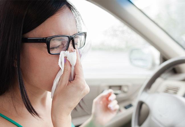 baldajos-alergia
